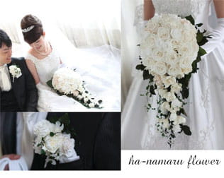 ha-namaru flower